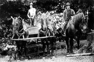 Historical Tucker County Photos